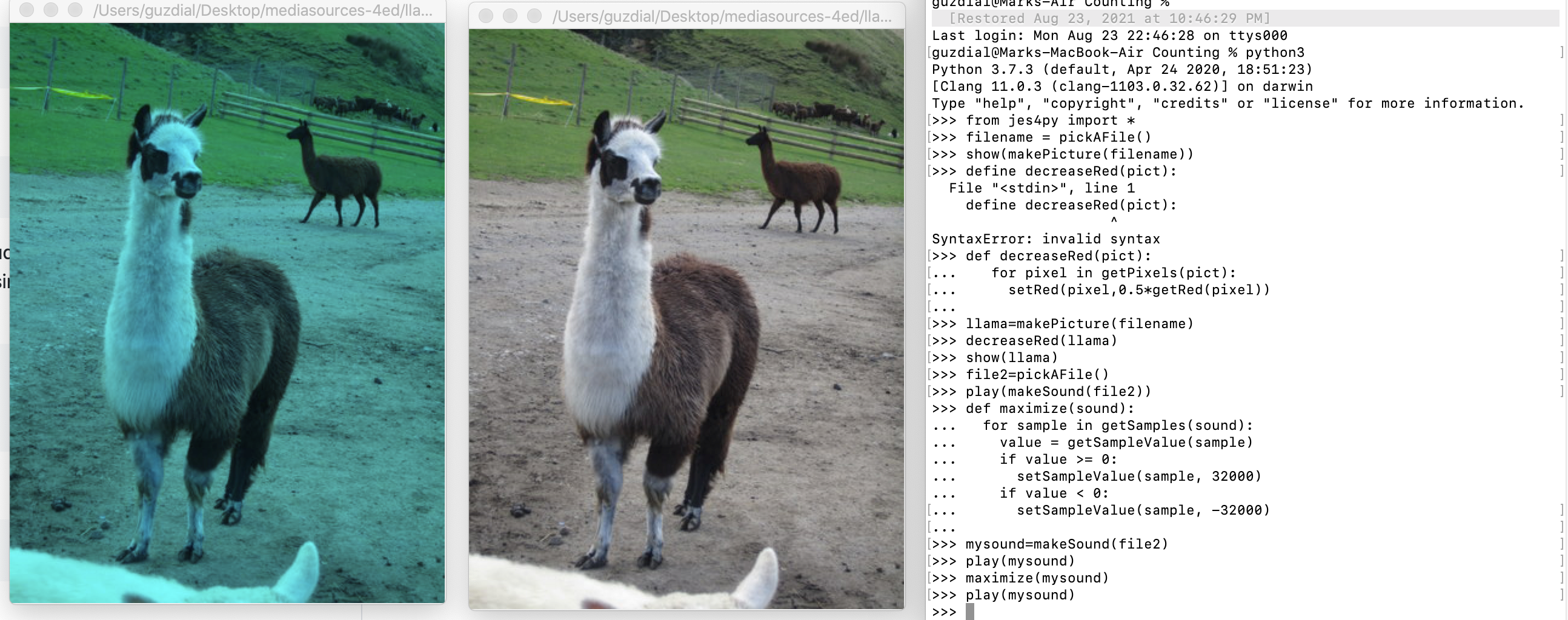 On the right is Python 3 code doing Media Computation. On the left are two images -- the original in the middle, and a red-reduced image on the far left.